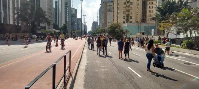 O que fazer domingo em São Paulo –  Atrações na Avenida Paulista