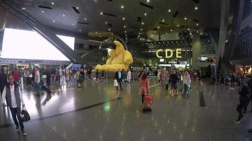 Aeroporto Hamad : O que fazer em conexão no aeroporto doha viagem a bordo